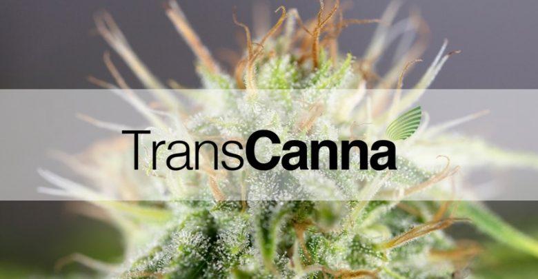 Transcanna Holdings